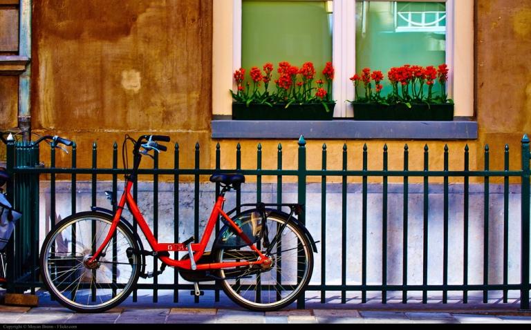 Bike by Brenn